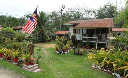 910+ Contoh Gambar Rumah Desa HD