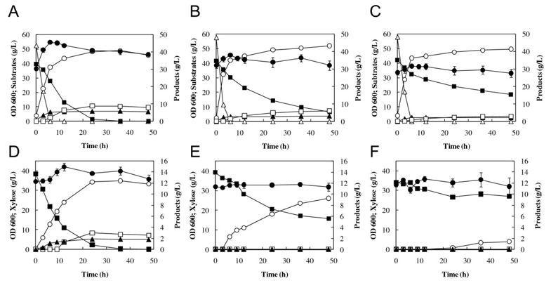 Pelan Rumah 30 X 50 Meletup Metabolic Pathway Engineering Based On Metabolomics Confers Acetic