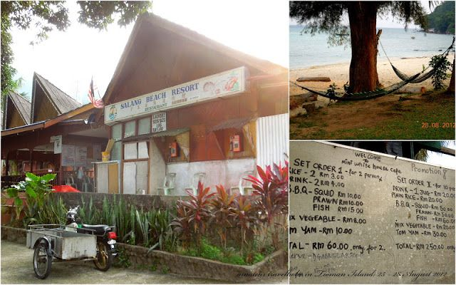 Pelan Rumah Simple Tapi Cantik Penting Me as An Amateur Travel Holic Rover In Tioman Day 4 Last Day