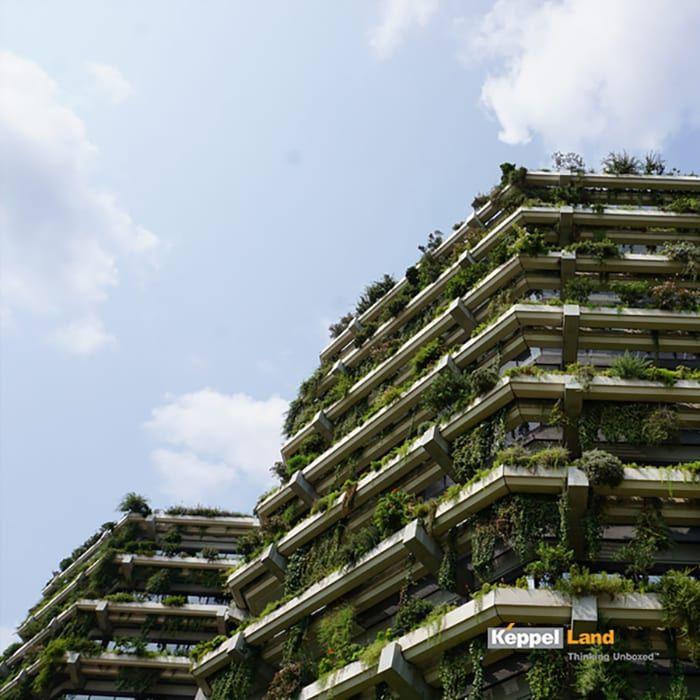 Susun atur Menarik Taman Rumah Power Taman Vertikal solusi Hijau Untuk Ruang Terbatas Keppel Land