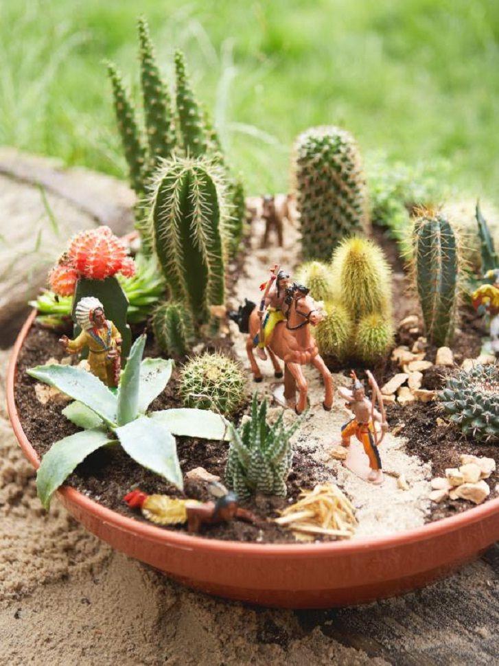 Contoh menanam kaktus dalam satu pot sumber hgtv