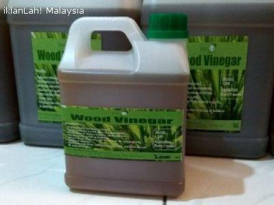 Malaysia Pokok Hiasan Eco G Cuka Kayu Wood Vinegar 5L RM100 Ilustrasi Jom Tengok Pelbagai Ilham Untuk Hiasan Dalaman Pejabat Sekolah