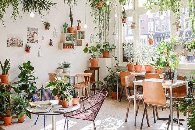 Cara Untuk Dekorasi Hiasan Dalaman Terbaik Rumah Konsep Hitam Putih Hebat 10 Desain Taman Dalam Rumah Untuk Rumah Kecil