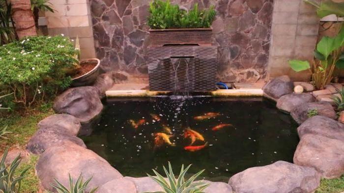 Cara Untuk Hiasan Dalam Rumah Penting Aneka Fungsi Kolam Ikan Dalam Rumah Dan Cara Perawatannya Tribun