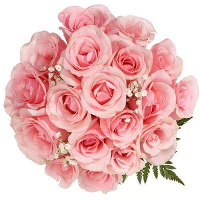 Assalamualaikum salam dihulurkan Sejambak bunga tanda ingatan Untuk mengharumkan tali persahabatan Ahli keluarga cg di utara barat timur dan selatan