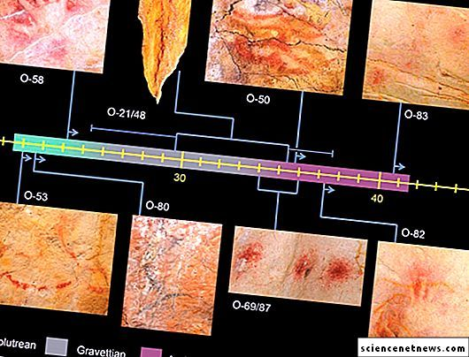 Anggaran umur dilakukan dengan kaedah yang sama – untuk isotop uranium dalam plak enapcemar kalsit Sampel tertua adalah tempat merah O 83 lukisan itu