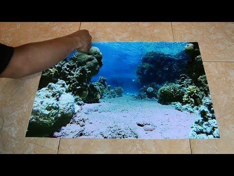 Cara Untuk Hiasan Dalaman Pejabat Baik Latar Belakang 3d Untuk Akuarium Untuk Akuarium 2019