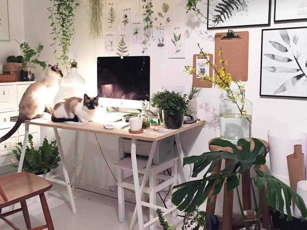 Cara Untuk Hiasan Dalaman Ruang Tamu Simple Terbaik Dekorasi Ruang Tamu Luas