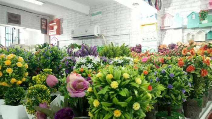 Cara Untuk Hiasan Rumah Kecil Meletup Percantik Ruangan Dengan Tanaman Hias Dan Bunga Palsu Tribun Jateng