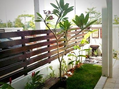 Pokok bunga kemboja ini sangat disukai dalam landskap Bali Saya juga sukakan pokok bunga ini Dalam konsep moden sekarang ramai yang sudah